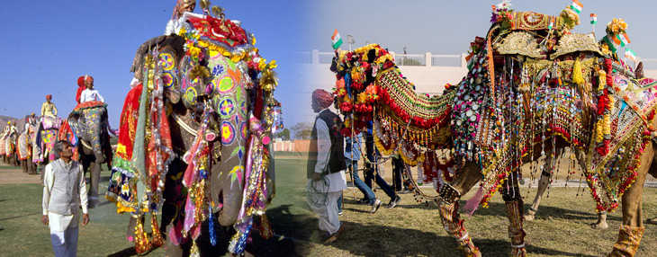 Rajasthan Fairs and Festivals Tour